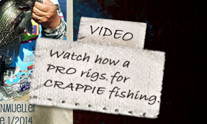 VIDEO - Watch pro crappie fisherman and two time Crappie Maters Points Winner, Mr. Dan Dannenmueller - fish with Stubby Steve's Pellets....